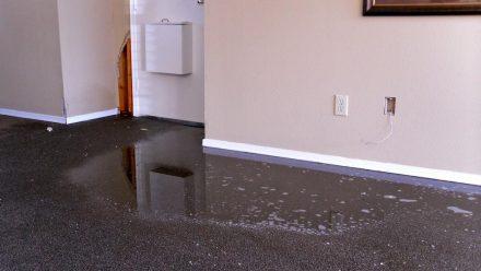 Rain Damage on Carpet